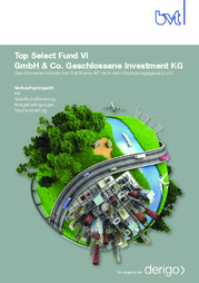 bvt-top-select-fund-vi